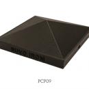 PCP09